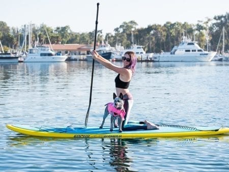 Dog on Paddleboard Flatwater Fasst Pro Paddleboard Aqua Adventures San Diego
