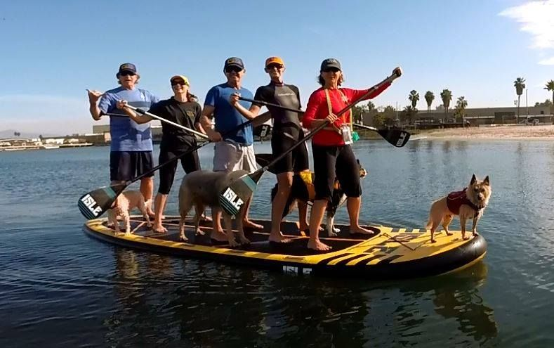 Stand Up Paddleboards >> Megalodon Stand Up Paddleboard Rental Aqua Adventures Kayaks And